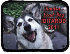 Iditarod dog picture patch